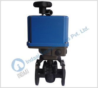 Motorized Plug Valves